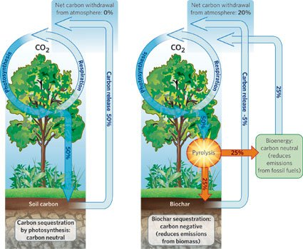 "Schematic of biochar production (From Lehmann ""Handful of Carbon"")"