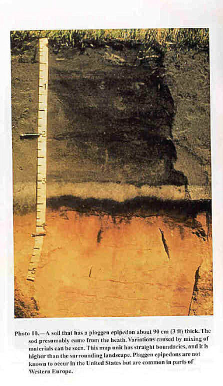 "Image of plaggen soil common to Western Europe where ""plaggen cultivation"" was practiced; remarkably similar in appearance and in soil management practices to Terra Preta anthrosols (Image courtesy University of Wisconsin Stevens Point)"